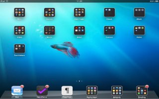 How To Use Folders For Organizing Home Screen On iPad
