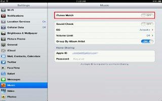 How To Use iTunes Match On iPad Mini