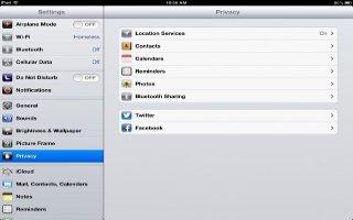 How To Use Privacy Settings On iPad Mini