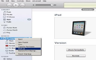 How To Back Up iPad Mini With iTunes