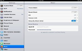 How To Use Music Settings On iPad Mini