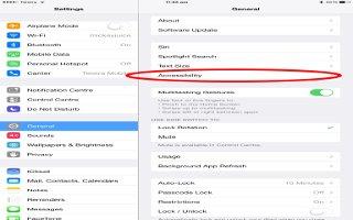 How To Use Accessibility  Shortcut - iPad Mini 2