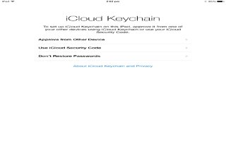 How To Use iCloud Keychain - iPad Air