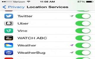 How To Use Privacy - iPad Mini 2