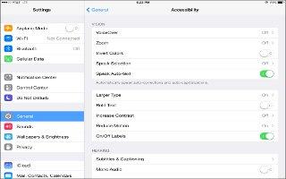 How To Use Zoom - iPad Mini 2