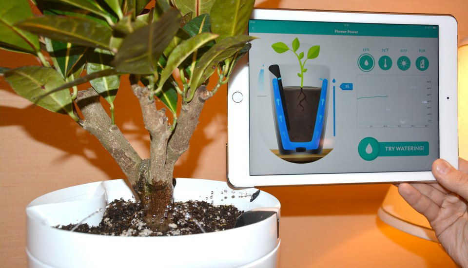 Parrot's Plant Sensors Can Do Watering