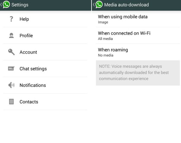 How To Use Auto Download - WhatsApp