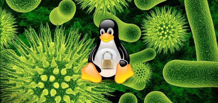Linux Security - Virus