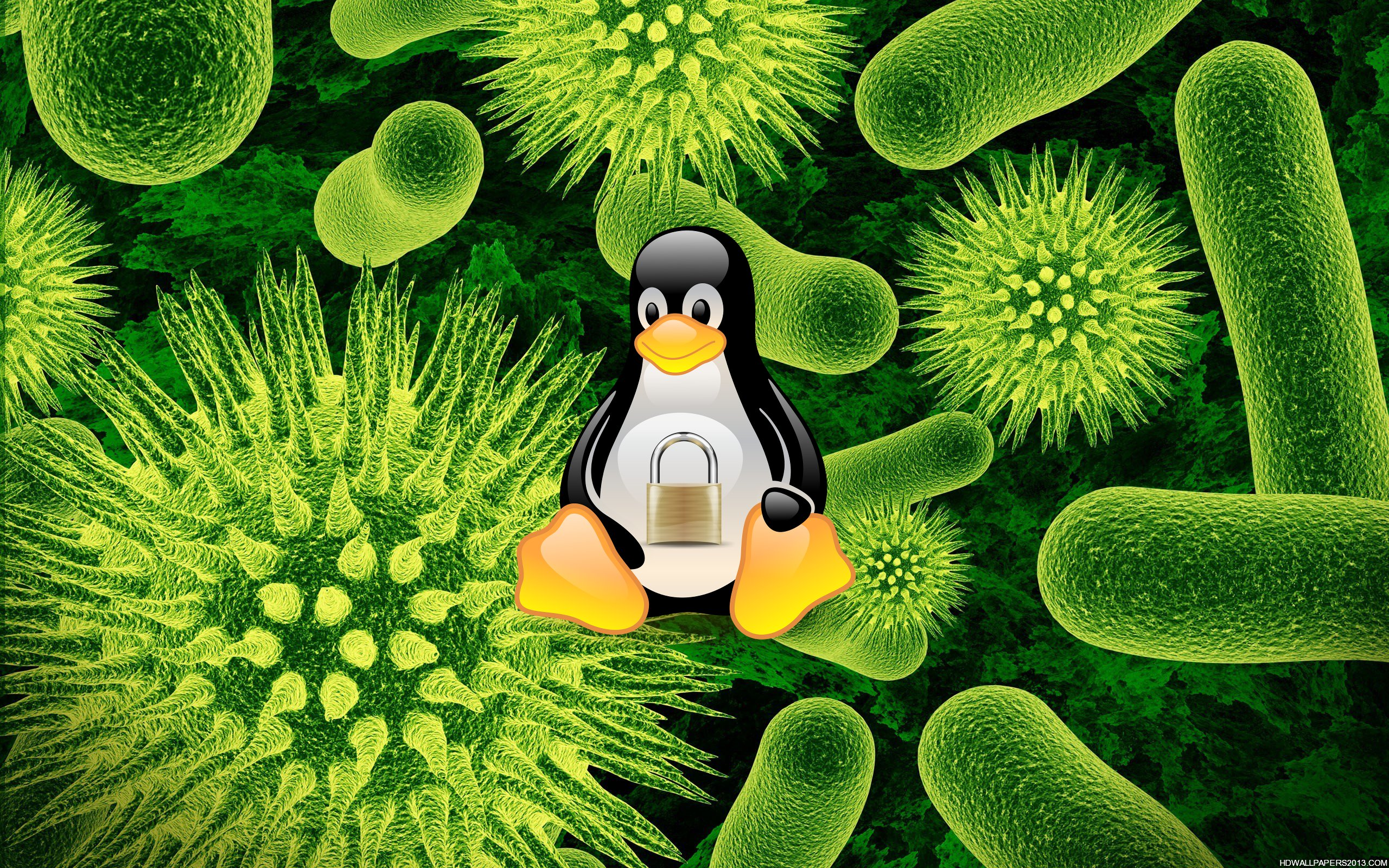 Linux Security - Virus